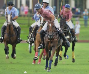 Photo of polo players